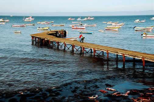 Isla Santa Maria - Puerto Sur