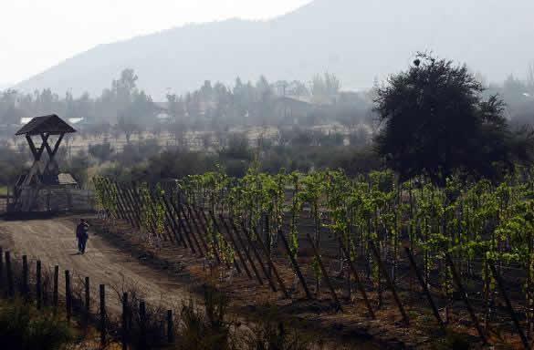 Ruta :  Colina, Peldehue y Chacabuco