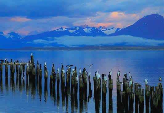 Conoce los atractivos turístico de Puerto Natales