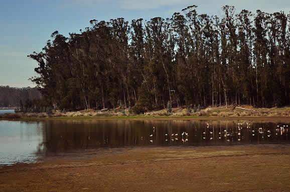 Ruta : Reserva Nacional El Yali