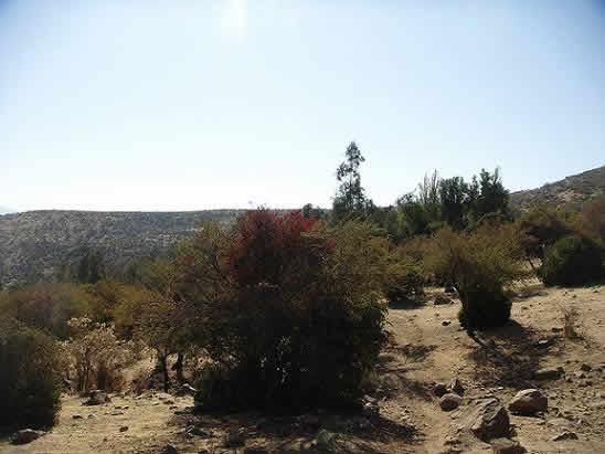 La ruta del Sendero Orolonco