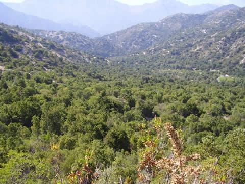 Ruta : Sendero Quebrada de Los Bueyes