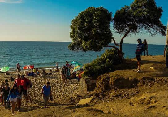 Conoce los atractivos turístico de Viña del Mar