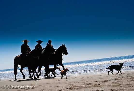 playa Arauco