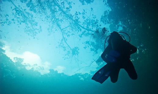 Descubre los atractivos turísticos de Cenote Angelita