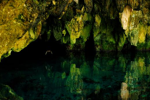 Cenote Bat Cave