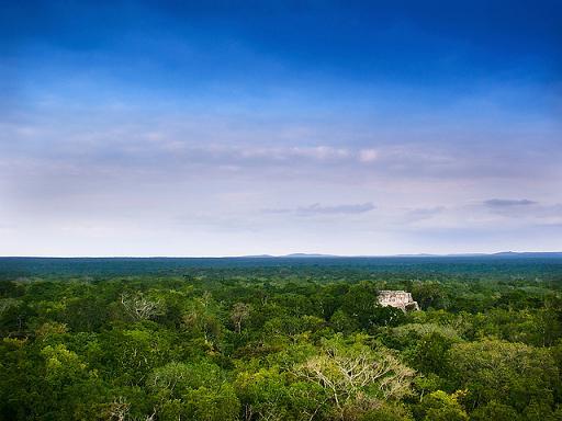 Reserva de Calakmul un lugar que no debes dejar de visitar en México