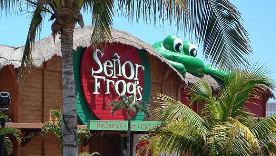 Lugares para visitar en México : Señor Frog's