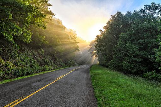 Descubre Las rutas más bonitas de USA