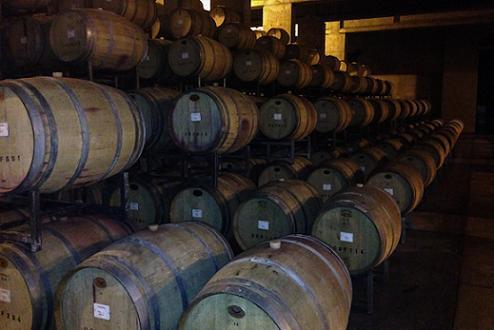 Mendoza-tierra vinos
