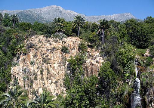 Rutas turísticas : Reserva Ecológica Oasis De La Campana