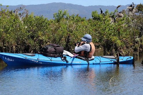 Descubre El Santuario de la Naturaleza Río Cruces