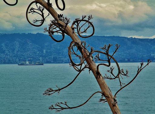 Valparaíso: destino ideal para las vacaciones de invierno