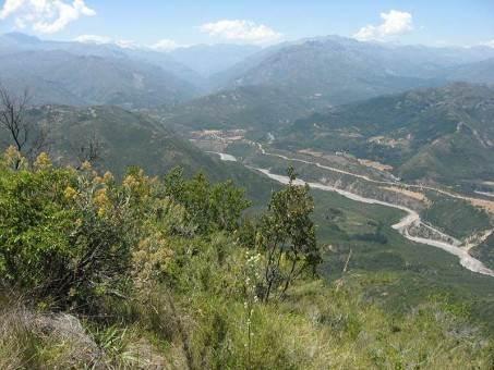 Bosques del Tinguiririca