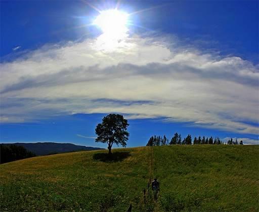La Araucanía : Cultura y Patrimonio