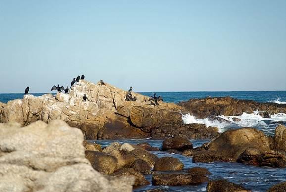 Playas recomendadas en Chile
